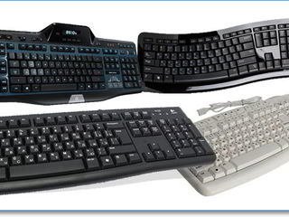 Клавиатуры и мыши - новые со скидкой !!!