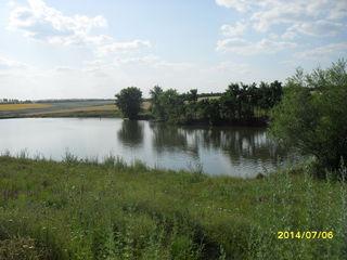 ферма + озеро+ 3 г, земли,