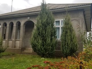 Casa noua s.COTIUJENI!!!     gradina mare!