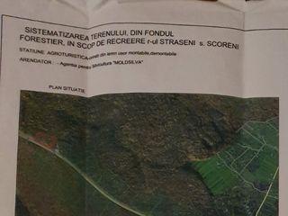 Продается 2 га леса первая линия под базу отдыха-Леушенская трасса