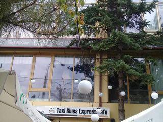 530м2 под бизнес на Рышкановке по ул.Киев возле Панком! Первая линия!