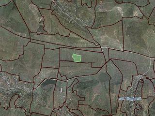 Pământ agricol consolidat cu suprafața 11.69 ha lângă traseul Chișinău-Bălți (beton). 2530102.195.