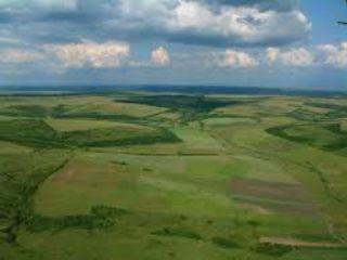 Teren agricol - profitați de o investiție perfecta, la cel mai bun preț...