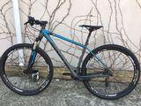 Focus Black Forest 29