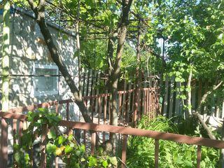 Casuta satul Bic,la 10 km de Chisinau! Vindem urgent