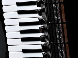 Lectii de acordeon si clape online