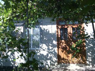Срочно продам дом в центре г. Купчинь Молдова Единецкий район. Торг