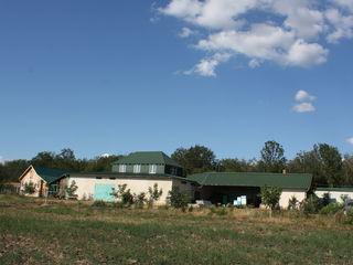 Vinzare arenda (+-25 ani)rancho ранчо gospodarie  si padure privata de salcim