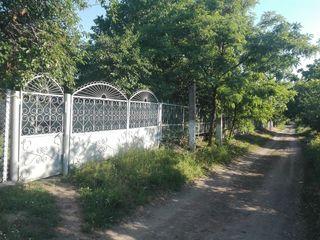 Casa gata de trai in Obreja Noua