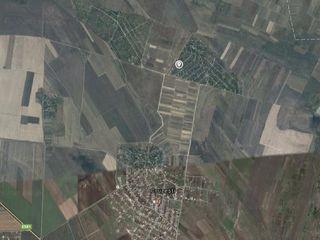 Vila in Cruzesti se vinde urgent