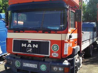 Man 23403