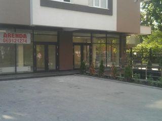 Офисные помещения в центре московского проспекта. возле ресторана Plovdiv