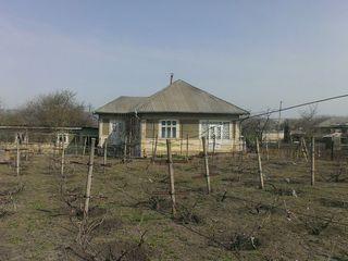 casă în satul Mihălaşa r. Telenești stare bună, sunt două garajuri, beci, bucătărie de vară