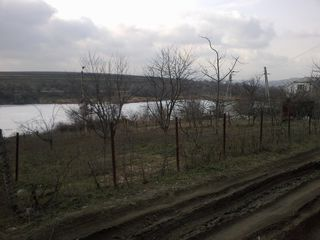 6 sote la singera pe malul iazului la 15 km de la Chisinau