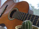Гитара, отличное состояние. чехол в комплекте.