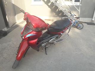 Viper Viper 110