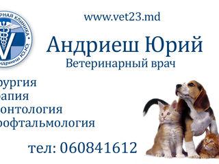 Medic Veterinar Non-Stop. Servicii la domiciliu.+ cabinet veterinar.