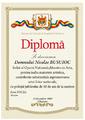 Diplome de onoare, certificate, scrisoare de multumire etc