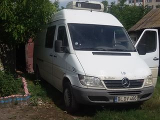 Mercedes spriter