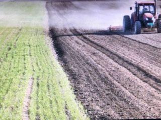 Cumpăr pămînt arabil sau vie la Peresecina în deal la Cetatea Veche.