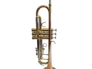 Trompetă muzicală Flame Pro TP M4300G SRR. Livrare în toată Moldova. Plata la primire