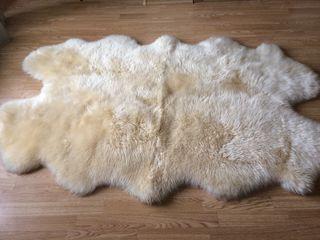 vind blana de lama pentru un interier comfortabil