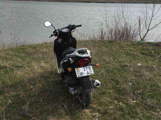 Viper 100cc