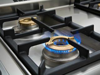 ремонт газовых плит. ремонт электроплит. ремонт духовки. ремонт микроволновок. чистка бойлеров.