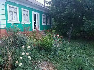 дом в селе Тырнова