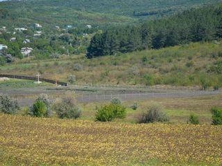 Casuta de vara linga padure, traseul Chisinau-Orhei.