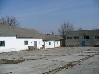 Complex industrial / Bază auto şi construcţii de producere şi depozitare str. Libertăţii 229