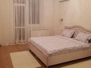 Сдаётся 1-ком. квартира в центре ул. Лев Толстой, 74