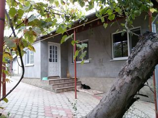 Продается дом в местечке Пырлица
