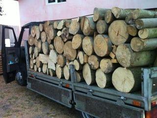Saptamina aceasta beneficiati de lemn calitativ la pret angro!
