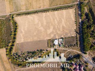 Vînzare teren agricol! Căușeni, 10 ha, ofertă urgentă!