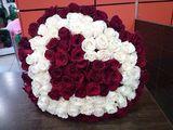 101 голладские розы и тюльпаны по супер цене !!!