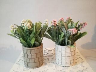 Декораивные цветы