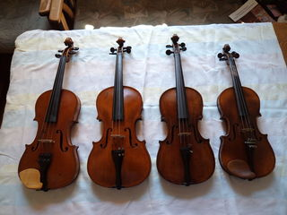 скрипки все размеры от 1000 лей