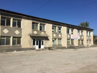 Аренда офисов в Бельцах суперцена Arenda oficii in Balti superpret 15, 20, 30, 40 m.p.