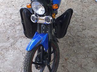 Viper Zs50F