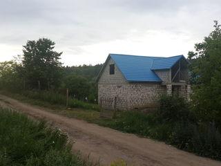 Ciorescu-Goian