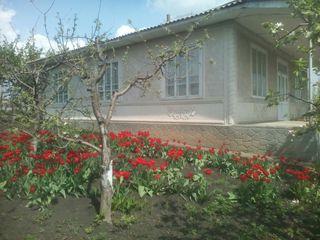 Vînd casă satul Mărăndeni, r-nul Făleşti! Schimb pe apartament in orasul Bălți!