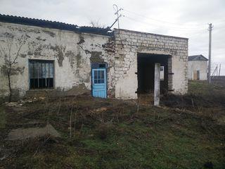 Complexul clădirilor de producere or. Taraclia, str. Pervomaiscaia, f/n