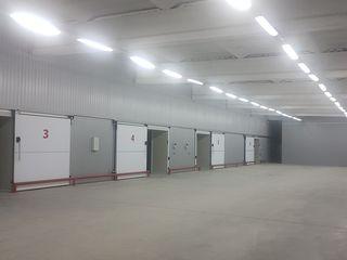 Сдаю холодильные камеры и складские помещения