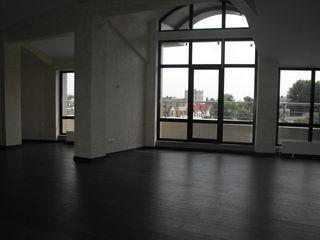 Офисные помещения 130м,140м,115м Александри евро