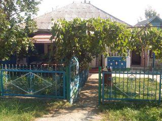 Продается дом в городе  Дрокия........