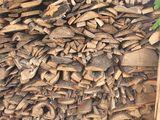 Resturi lemnoase, Древесные отходы