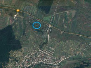 Vânzare teren pomicol, raionul Strășeni - s. Pănășești