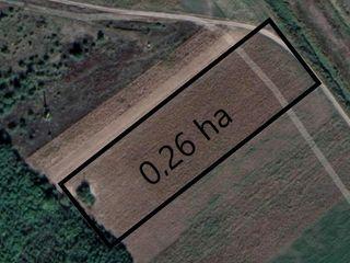 Vând teren arabil lângă zona de odihna Razeni