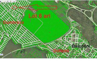 Vila Dumbrava 6 ari. Electricitate. apa.